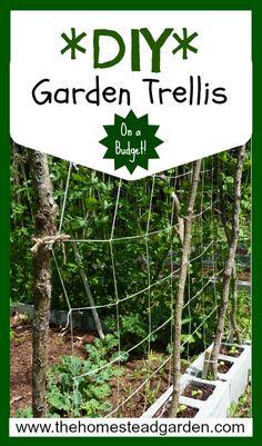 DIY Garden Trellis Idea (on a Budget!)