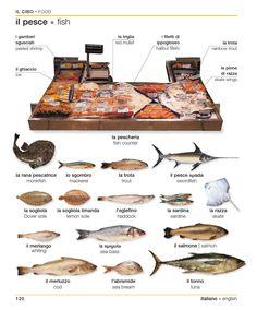 Italian english visual bilingual dictionary by ismael04 - issuu