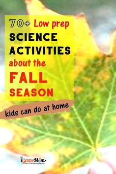 Fall science activities for kids to do at home. Seasonal science experiments using pumpkins, leaves, apples, pine cones, sun, moon, stars, wind, rain. Free STEM resource for classroom, homeschool or after school enrichment. Science Videos For Kids, Science Projects For Kids, Science Activities For Kids, Cool Science Experiments, Science Lessons, Teaching Science, Stem Activities, Learning Activities, Kids Learning