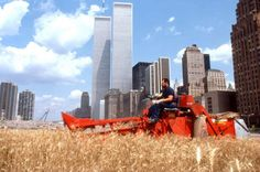 """""""Wheatfield was a calling to account, it represented food, energy, commerce, world trade, economics. It referred to mismanagement, waste, world hunger, and ecological concerns.."""" - Agnes Denes"""