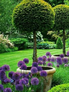 90 Stunning Cottage Garden Ideas for Front Yard Inspiration ! Modern Landscaping, Backyard Landscaping, Landscaping Ideas, Small Gardens, Outdoor Gardens, Modern Gardens, Farm Gardens, Amazing Gardens, Beautiful Gardens