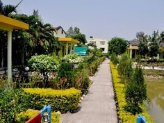 If you're a nature lover and adore being surrounded by the enchanting plants, #United21 Resort, #Sunderbans awaits you