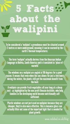 walipini