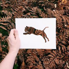 Amazing animal paper cut outs using nature | Incredible Snaps