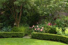 peonies garden | Peonies | in a garden...