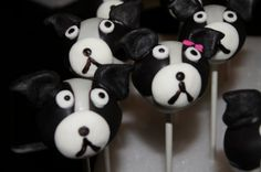 Boston Terriers Cake Pops