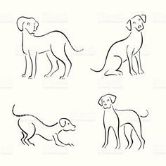 Vector Images, Illustrations and Cliparts: Dog design set Line Drawing Images, Dog Line Drawing, Dog Line Art, Puppy Drawing, Dog Outline, Outline Drawings, Easy Drawings, Animal Drawings, Design Set