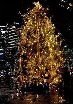 The Birmingham Christmas Tree lights up Linn Park in downtown Birmingham, Alabama. (Mark Almond/AL.com)