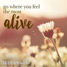 Go where you #feel most #alive.  #happinessink #happiness