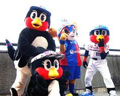 [ J1:第25節 F東京 vs 湘南 ] 本日は東京ヤクルトスワローズとのタイアップ試合。両チームのマスコットがコンコースでサポーターをお出迎え。東京ドロンパ、つば九郎、燕太郎、つばみ。両チームのマスコットが揃い踏み。  2010年10月3日(日):国立競技場