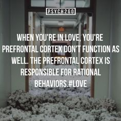 You become irrational. It's a disease.  #Loveproblems #PrefrontalCortex