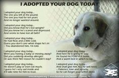 I adopted your dog poem