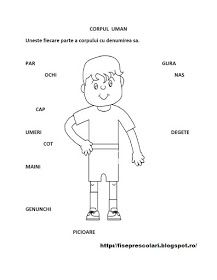 Fise de lucru - gradinita: Corpul Uman/ Obiecte de ingrijire personala - Fise de lucru pentru copiii din scola si gradinita Romanian Language, After School, Toddler Activities, Kindergarten, Preschool, Classroom, Teaching, Education, Memes