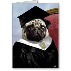 >>>Coupon Code          Pug graduation card           Pug graduation card lowest price for you. In addition you can compare price with another store and read helpful reviews. BuyHow to          Pug graduation card Online Secure Check out Quick and Easy...Cleck Hot Deals >>> http://www.zazzle.com/pug_graduation_card-137103032269995081?rf=238627982471231924&zbar=1&tc=terrest