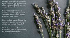 #plantbased  #healing  #homeopathic  #rememdy  #DIY  #healingplants