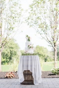 Barn Chic Romance for a Midwestern Wedding | Hey Wedding Lady Modern Wedding Theme, Elegant Wedding Cakes, Nontraditional Wedding, Farm Wedding, Chic Wedding, Rustic Wedding, Wedding Dress Cupcakes, Wedding Cakes With Flowers, Evergreen Flowers