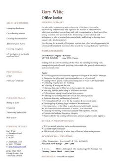 It Director Resume Samples  Top  Political Director Resume