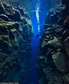 Mergulho entre placas tectónicas. Alexander Mustard