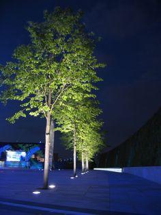 Breathtaking Tree-Lighting Design Ideas That Will Enhance Your Exterior - decorsavage Facade Lighting, Cool Lighting, Outdoor Lighting, Tree Uplighting, Blitz Design, Landscape Lighting Design, External Lighting, Light Architecture, Outdoor Landscaping