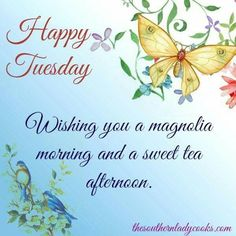 Happy & Blessed Wednesday, Wishing You All God's Blessings Today And Every Day. Tuesday Quotes Good Morning, Morning Quotes For Friends, Happy Tuesday Quotes, Tuesday Humor, Morning Greetings Quotes, Happy Quotes, Blessed Wednesday, Wednesday Wishes, Good Morning Picture