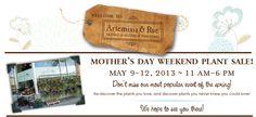 Artemisia & Rue - Aromas-Elixirs-Tinctures - 70 Broadway, STE125, Denver, CO (303) 484-8982