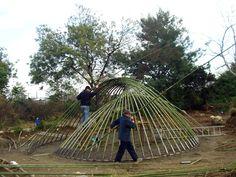 20100206180039!Bamboo_Structure.jpeg (1600×1200)