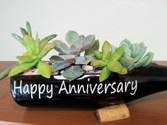 Happy Anniversary Gift makes a great succulent gift too! From #LookingSharpCactus  www.etsy/shop/lookingsharpcactus.com