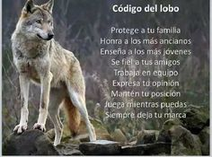 Wolf's Code of life: Protect your family. Honor the elderly. Teach the young. Be loyal to your friends. Be a team member.Express your opinion. Keep your position, Play while you can. Always leave your mark.