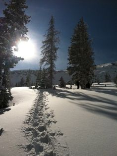 snowshoeing.  my current obsession.