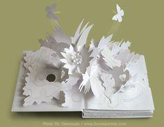 White pop-up book... just magic! Trail, by David Pelham