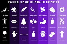 A Guide To Essential Oils (Infographic)