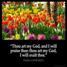 Inspirational Images - Old Testament - Page 4 and encouraging Bible verses from the King James Bible Bible Verses Kjv, King James Bible Verses, Favorite Bible Verses, Bible Quotes, Faith Quotes, Wisdom Quotes, Bible Psalms, Prayer Scriptures, Biblical Quotes