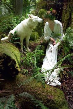 Voice of Nature — alldaymakebelieve: Wolf Kiss By Cori Storb Fantasy World, Fantasy Art, Images Esthétiques, Wolves And Women, Spirit Animal, Faeries, Beautiful Creatures, Character Inspiration, Fairy Tales