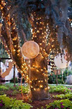 Lichterketten um einen Baum umwickelt