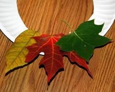 A wreath made from fall leaves - kids can find leaves on a nature walk, then glue them to a paper plate to make their own unique wreaths.