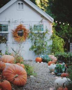 Autumn Greenhouse French Country Cottage, French Country Decorating, Cottage Style, Country Chic, Country Cottage Garden, Country Cottages, Country Homes, Country Living, Halloween Veranda