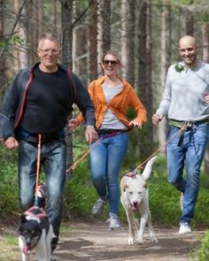 Äventyrsvandra eller testa Husky Sports  hos Nystedt Husky Tur & Natur  -Dogsled & Outdoor Activities in the wilderness of Småland