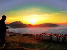 Shepherd in Manaria (Euskadi Spain) [3264x2448] via Classy Bro