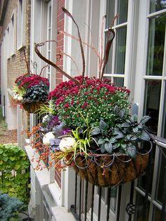 Fall Window Boxes!!! Bebe'!!! Festive Autumnal Windowboxes!!!