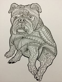 I Drew This Zentangle Drawing Of An Englishbulldog