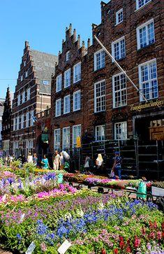 Market den Bosch Travellous Wereld