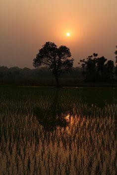 Sunset at Chitwan National Park Nepal by Worldizen, via Flickr