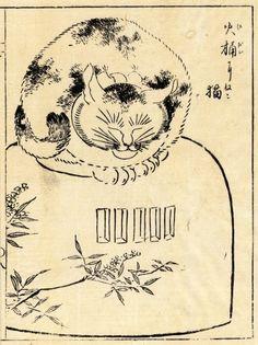 Morikuni 1679-1748, Tachibana, Japan, Osaka