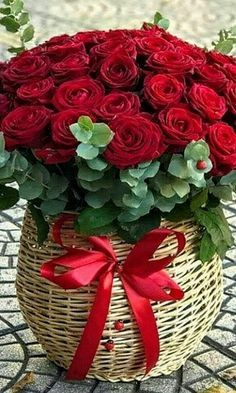 Beautiful Flowers Pictures, Beautiful Flowers Wallpapers, Beautiful Rose Flowers, Beautiful Flower Arrangements, Flower Pictures, Happy Birthday Flowers Wishes, Rose Flower Wallpaper, Red Rose Bouquet, Good Morning Flowers