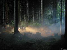 Man in the woods de Gregory Crewdson. OpenArt. Galerías de arte. Compra y venta de obra de arte.