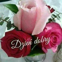Rose, Flowers, Plants, Pictures, Den, Ha Ha, Facebook, Fotografia, Polish