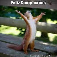Resultado de imagen para memes de feliz cumpleaños gatos