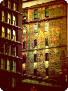 St. Louis Old Buildings downtown