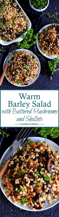 warm, hearty salad is a great wintertime dinner option. Warm Barley Salad with Buttered Mushrooms and Shallots has a bright citrus-y burst of flavour too! Best Salad Recipes, Chicken Salad Recipes, Side Dish Recipes, Dinner Recipes, Healthy Recipes, Savoury Recipes, Savoury Dishes, Easy Recipes, Vegetarian Recipes