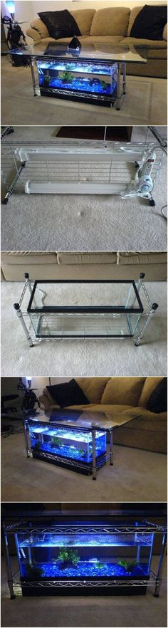 How to Make an Aquarium Coffee Table #furniture #AquariumDecorationsIdeas #TropicalFishAquariumIdeas